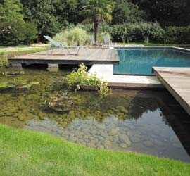 Piscine naturelle reglementation for Reglementation securite piscine